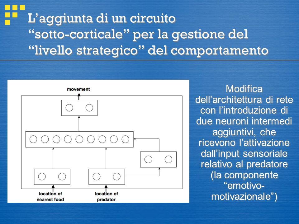 L'aggiunta di un circuito sotto-corticale per la gestione del livello strategico del comportamento Modifica dell'architettura di rete con l'introduzione di due neuroni intermedi aggiuntivi, che ricevono l'attivazione dall'input sensoriale relativo al predatore (la componente emotivo- motivazionale )