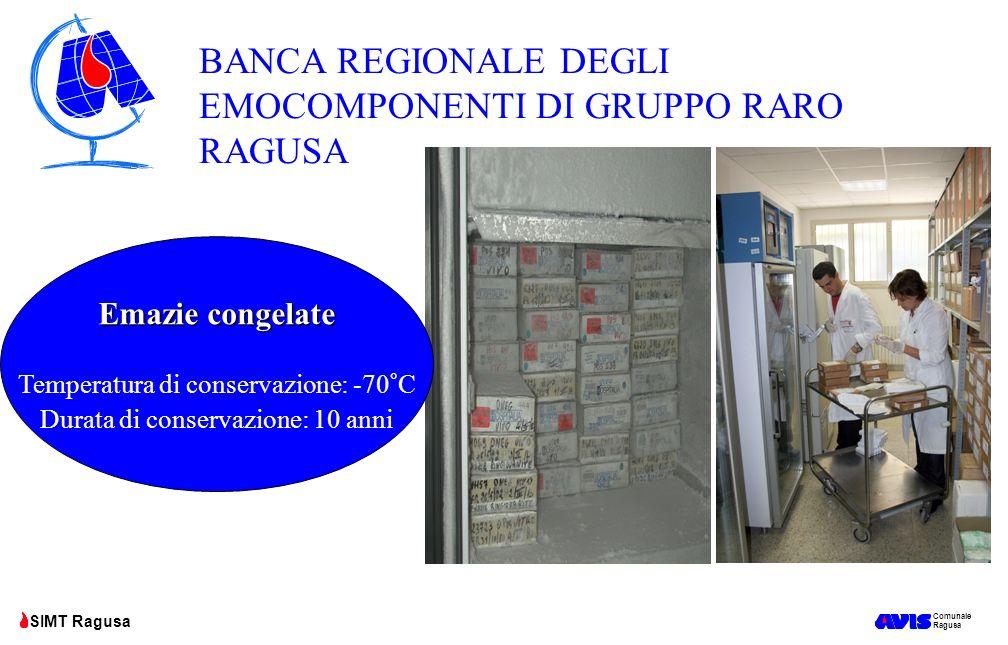 Comunale Ragusa SIMT Ragusa Emazie congelate Temperatura di conservazione: -70°C Durata di conservazione: 10 anni BANCA REGIONALE DEGLI EMOCOMPONENTI