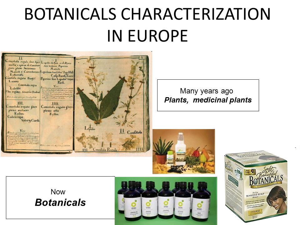 Many years ago Plants, medicinal plants Now Botanicals BOTANICALS CHARACTERIZATION IN EUROPE