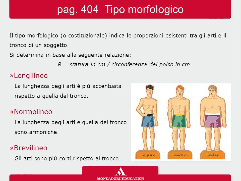 Il tipo morfologico (o costituzionale) indica le proporzioni esistenti tra gli arti e il tronco di un soggetto.