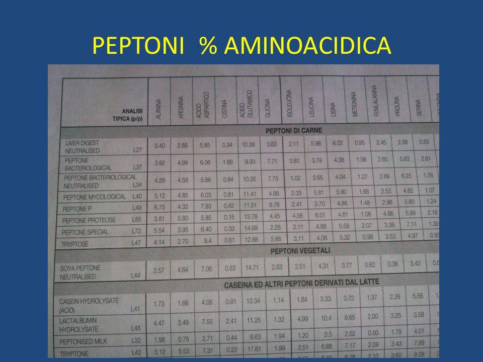 PEPTONI % AMINOACIDICA