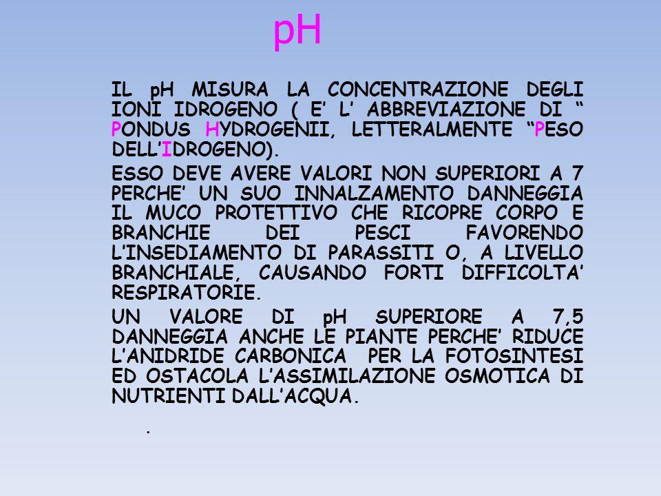 pH IL pH MISURA LA CONCENTRAZIONE DEGLI IONI IDROGENO ( E' L' ABBREVIAZIONE DI PONDUS HYDROGENII, LETTERALMENTE PESO DELL'IDROGENO).
