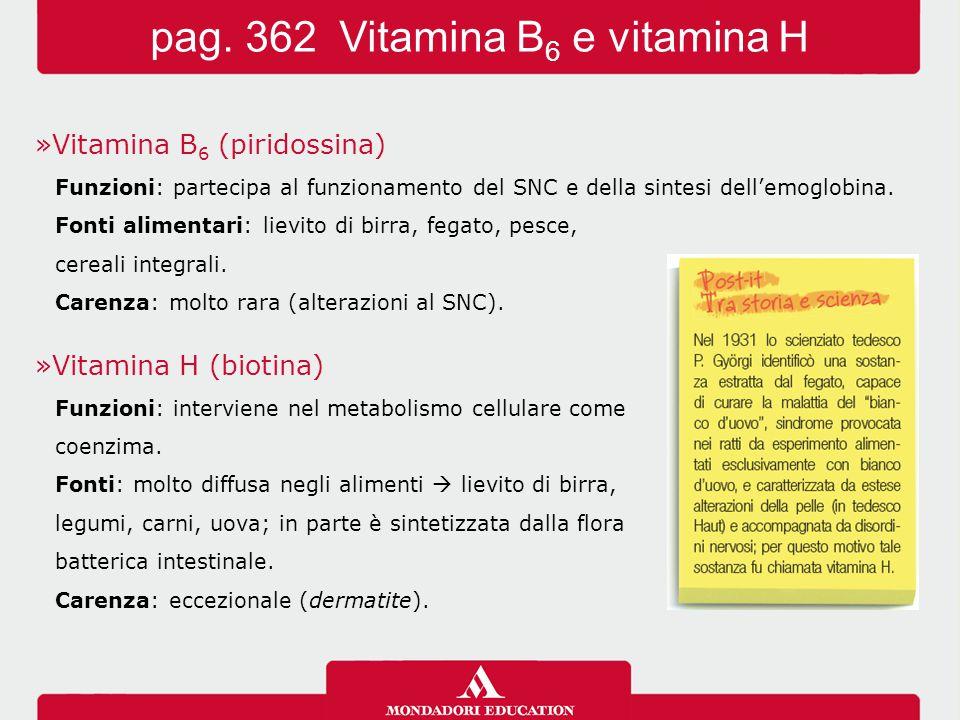 »Vitamina B 6 (piridossina) Funzioni: partecipa al funzionamento del SNC e della sintesi dell'emoglobina. Fonti alimentari: lievito di birra, fegato,