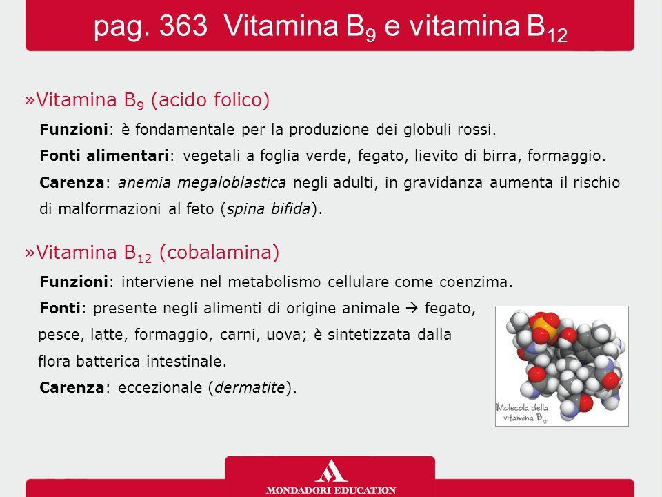 »Vitamina B 9 (acido folico) Funzioni: è fondamentale per la produzione dei globuli rossi. Fonti alimentari: vegetali a foglia verde, fegato, lievito