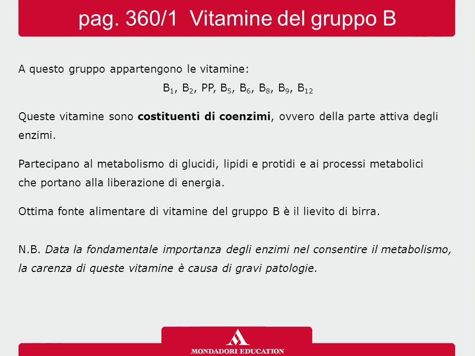 A questo gruppo appartengono le vitamine: B 1, B 2, PP, B 5, B 6, B 8, B 9, B 12 Queste vitamine sono costituenti di coenzimi, ovvero della parte atti