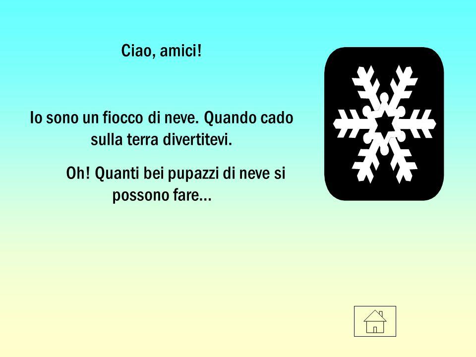 Ciao, amici! Io sono un fiocco di neve. Quando cado sulla terra divertitevi. Oh! Quanti bei pupazzi di neve si possono fare…