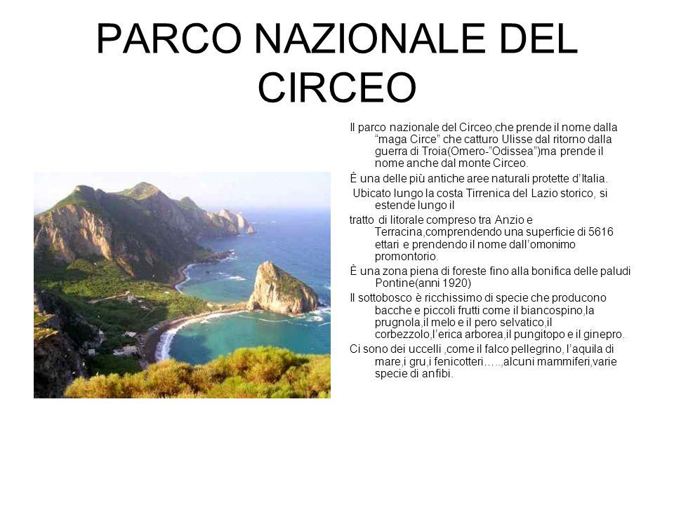 PARCO NAZIONALE DEL CIRCEO Il parco nazionale del Circeo,che prende il nome dalla maga Circe che catturo Ulisse dal ritorno dalla guerra di Troia(Omero- Odissea )ma prende il nome anche dal monte Circeo.