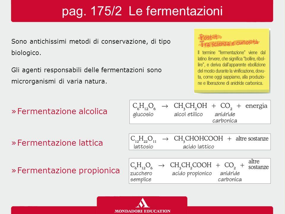 Sono antichissimi metodi di conservazione, di tipo biologico. Gli agenti responsabili delle fermentazioni sono microrganismi di varia natura. »Ferment