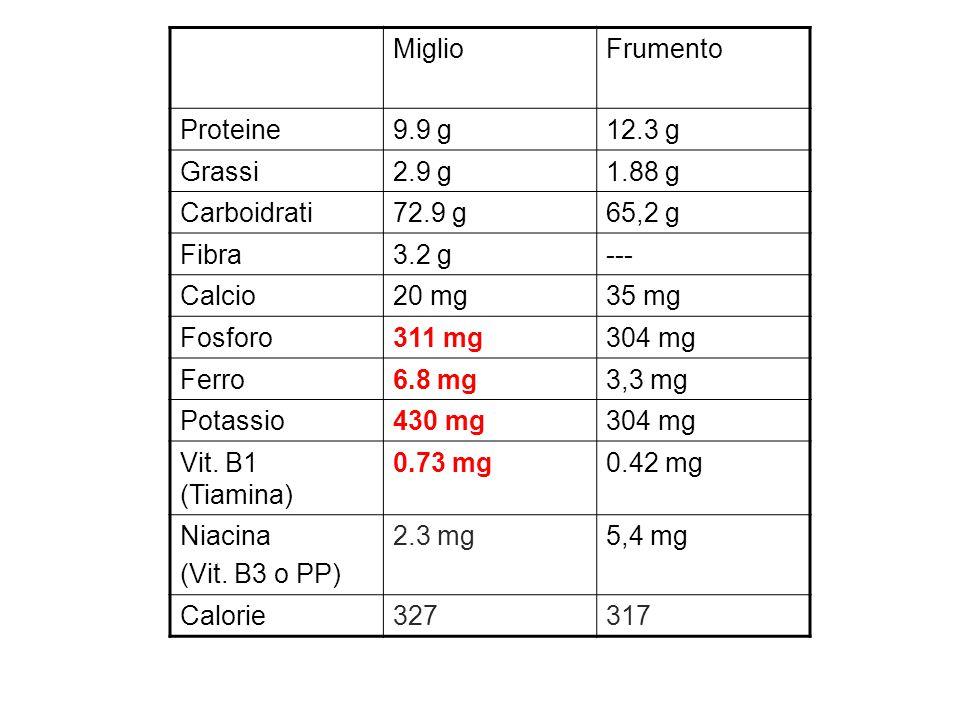 MiglioFrumento Proteine9.9 g12.3 g Grassi2.9 g1.88 g Carboidrati72.9 g65,2 g Fibra3.2 g--- Calcio20 mg35 mg Fosforo311 mg304 mg Ferro6.8 mg3,3 mg Potassio430 mg304 mg Vit.