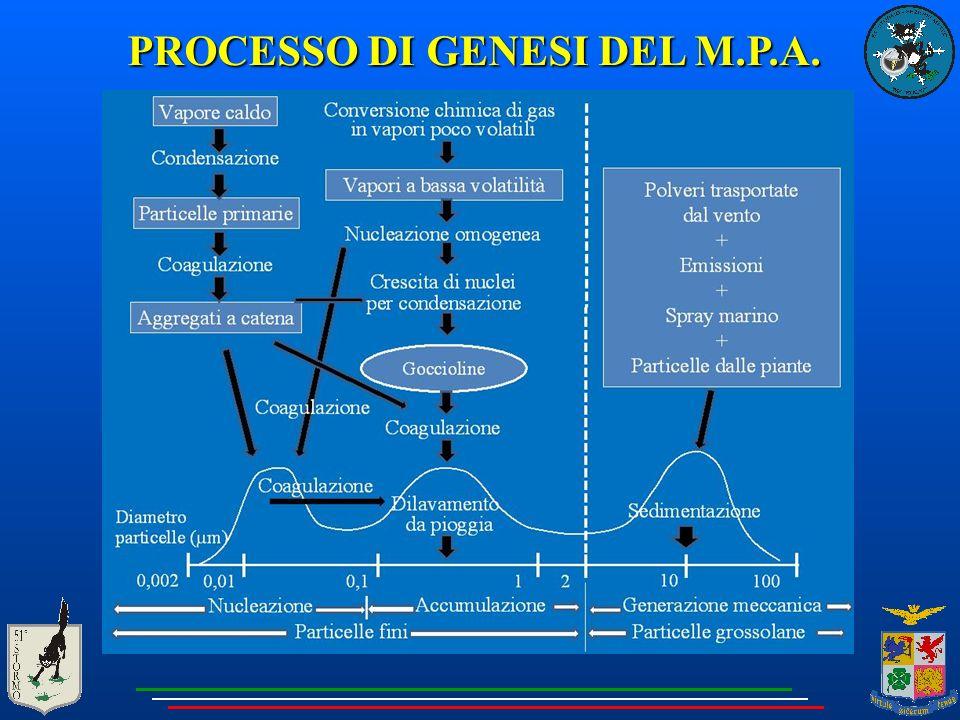 PROCESSO DI GENESI DEL M.P.A.