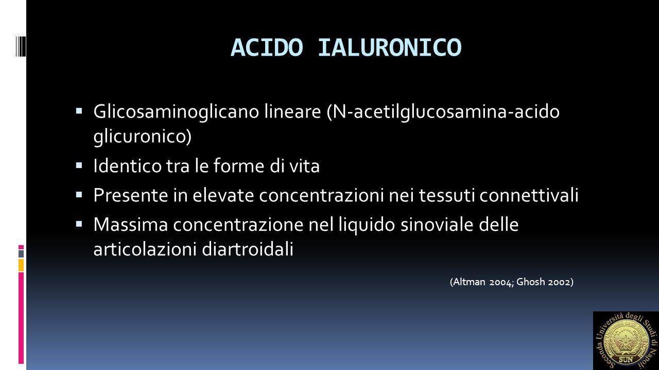 ACIDO IALURONICO  Sintetizzato dai sinoviociti di tipo B, garantisce l'attività di filtro della membrana sinoviale  Bilancio idrico tissutale  Interazioni steriche  Lubrificazione