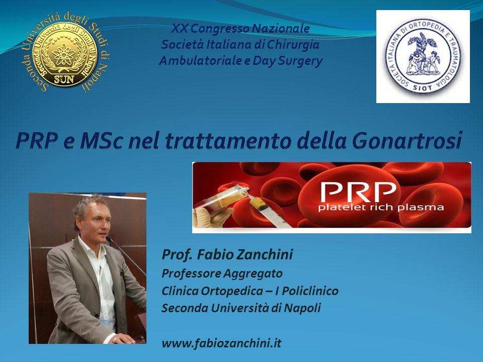 Prof. Fabio Zanchini Professore Aggregato Clinica Ortopedica – I Policlinico Seconda Università di Napoli www.fabiozanchini.it XX Congresso Nazionale