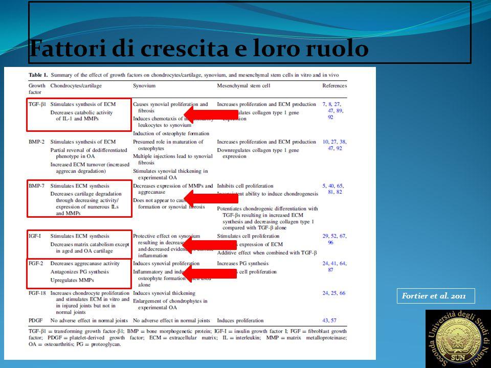 Fattori di crescita e loro ruolo Fortier et al. 2011