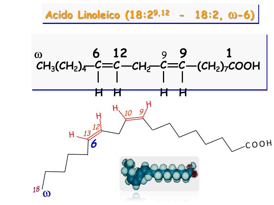 CH 3 (CH 2 ) 4 CH 2 C C C C HHH (CH 2 ) 7 COOH H 9121 Acido Linoleico (18:2 9,12 - 18:2,  -6)  6 9 H H H H C O O H 9 10 13 12 18 6 