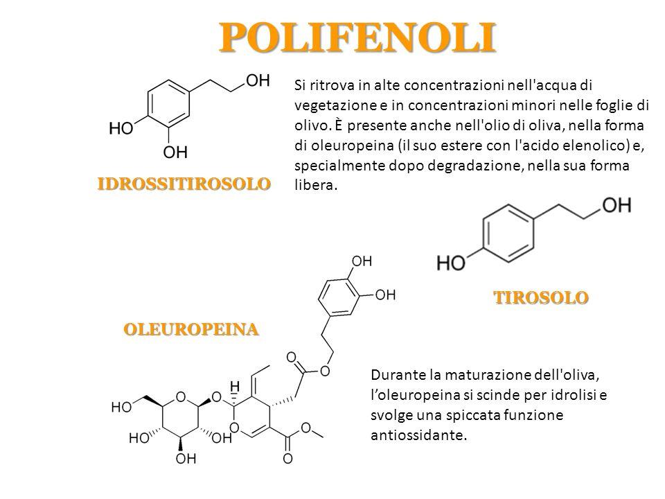 Si ritrova in alte concentrazioni nell'acqua di vegetazione e in concentrazioni minori nelle foglie di olivo. È presente anche nell'olio di oliva, nel