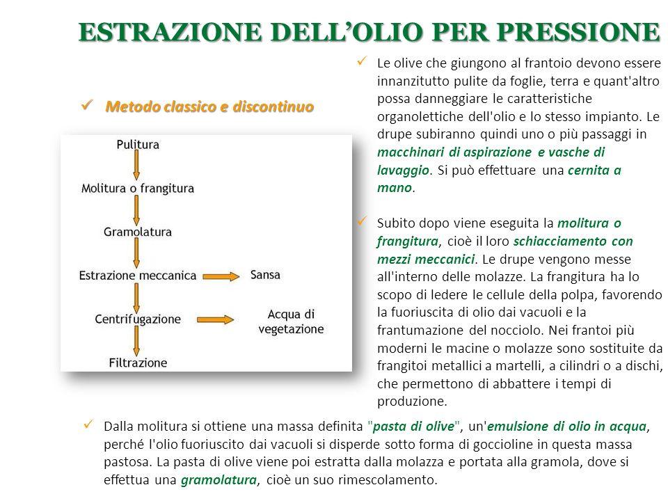ESTRAZIONE DELL'OLIO PER PRESSIONE Le olive che giungono al frantoio devono essere innanzitutto pulite da foglie, terra e quant'altro possa danneggiar