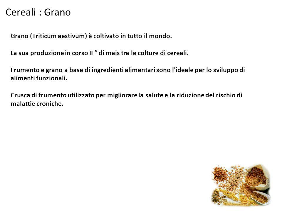 Cereali : Grano Grano (Triticum aestivum) è coltivato in tutto il mondo. La sua produzione in corso II ° di mais tra le colture di cereali. Frumento e