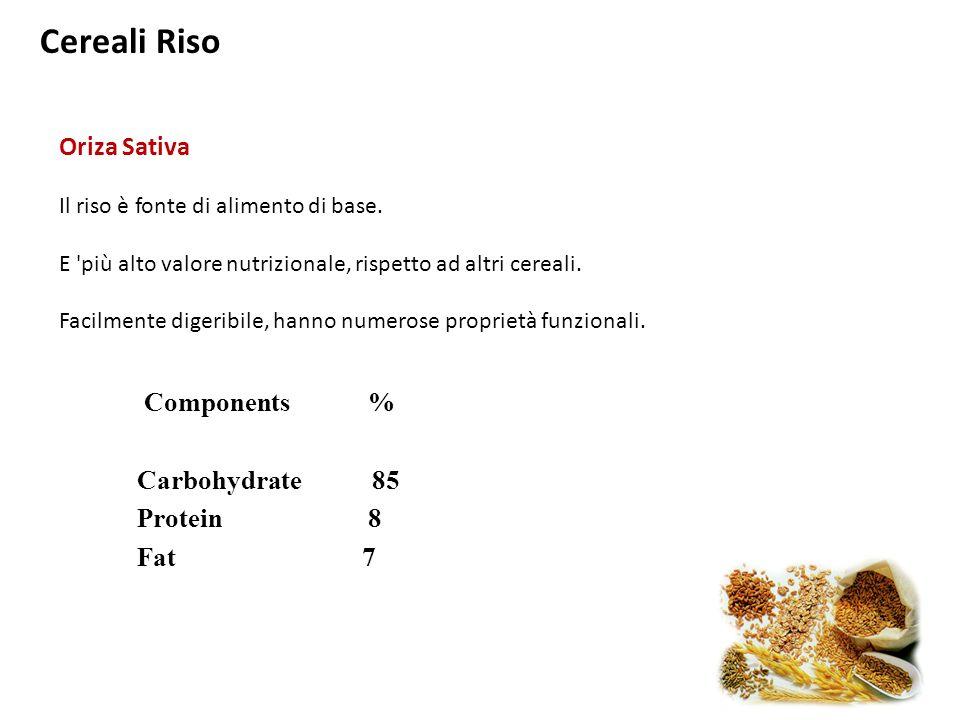 Cereali Riso Oriza Sativa Il riso è fonte di alimento di base. E 'più alto valore nutrizionale, rispetto ad altri cereali. Facilmente digeribile, hann