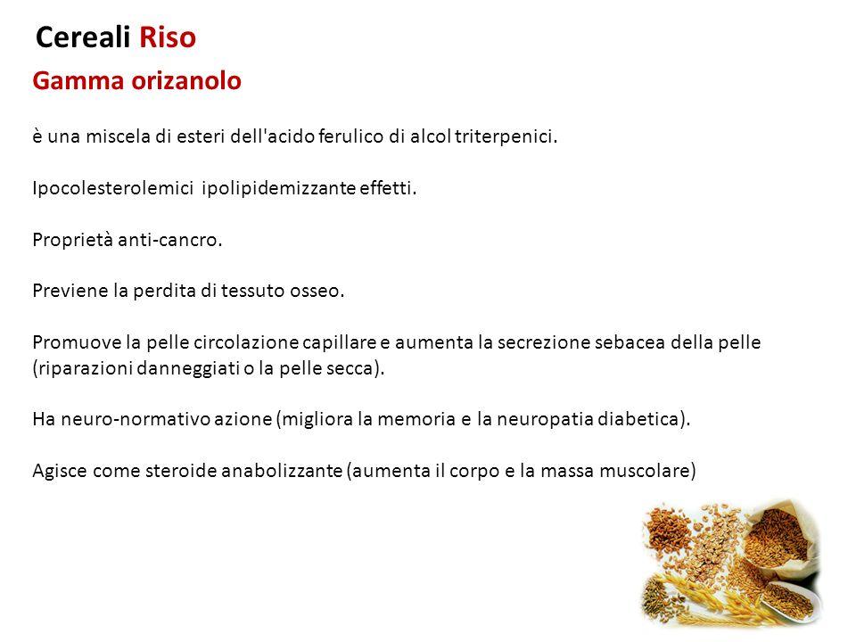 Gamma orizanolo Cereali Riso è una miscela di esteri dell'acido ferulico di alcol triterpenici. Ipocolesterolemici ipolipidemizzante effetti. Propriet