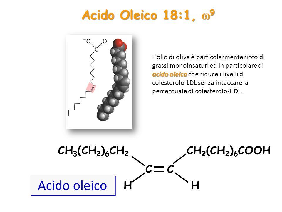 Acido Oleico 18:1,  9 CH 3 (CH 2 ) 6 CH 2 CH 2 (CH 2 ) 6 COOH C C HH Acido oleico acido oleico L'olio di oliva è particolarmente ricco di grassi mono