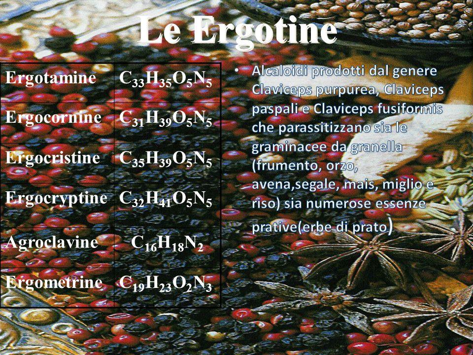 Le Ergotine ErgotamineC 33 H 35 O 5 N 5 ErgocornineC 31 H 39 O 5 N 5 ErgocristineC 35 H 39 O 5 N 5 ErgocryptineC 32 H 41 O 5 N 5 AgroclavineC 16 H 18