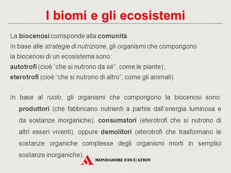 La biocenosi corrisponde alla comunità. In base alle strategie di nutrizione, gli organismi che compongono la biocenosi di un ecosistema sono: autotro