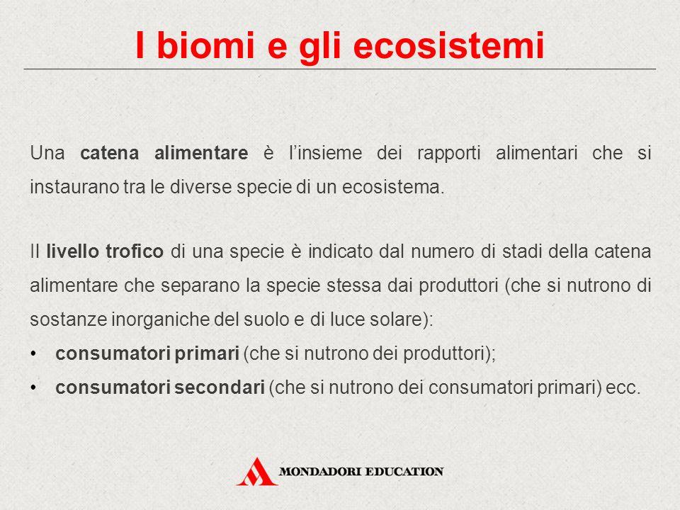 I biomi e gli ecosistemi Una catena alimentare è l'insieme dei rapporti alimentari che si instaurano tra le diverse specie di un ecosistema. Il livell