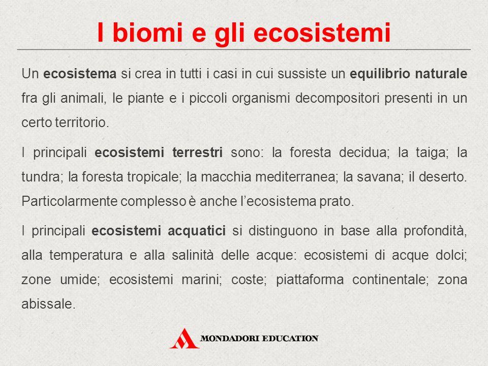 I biomi e gli ecosistemi Un ecosistema si crea in tutti i casi in cui sussiste un equilibrio naturale fra gli animali, le piante e i piccoli organismi