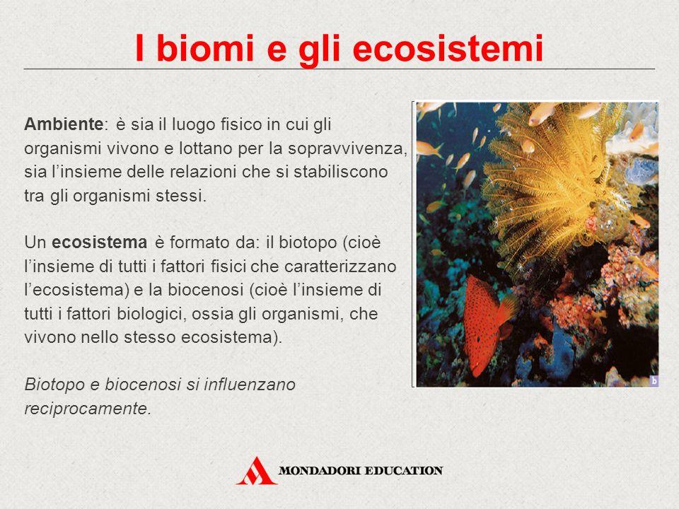 Ambiente: è sia il luogo fisico in cui gli organismi vivono e lottano per la sopravvivenza, sia l'insieme delle relazioni che si stabiliscono tra gli