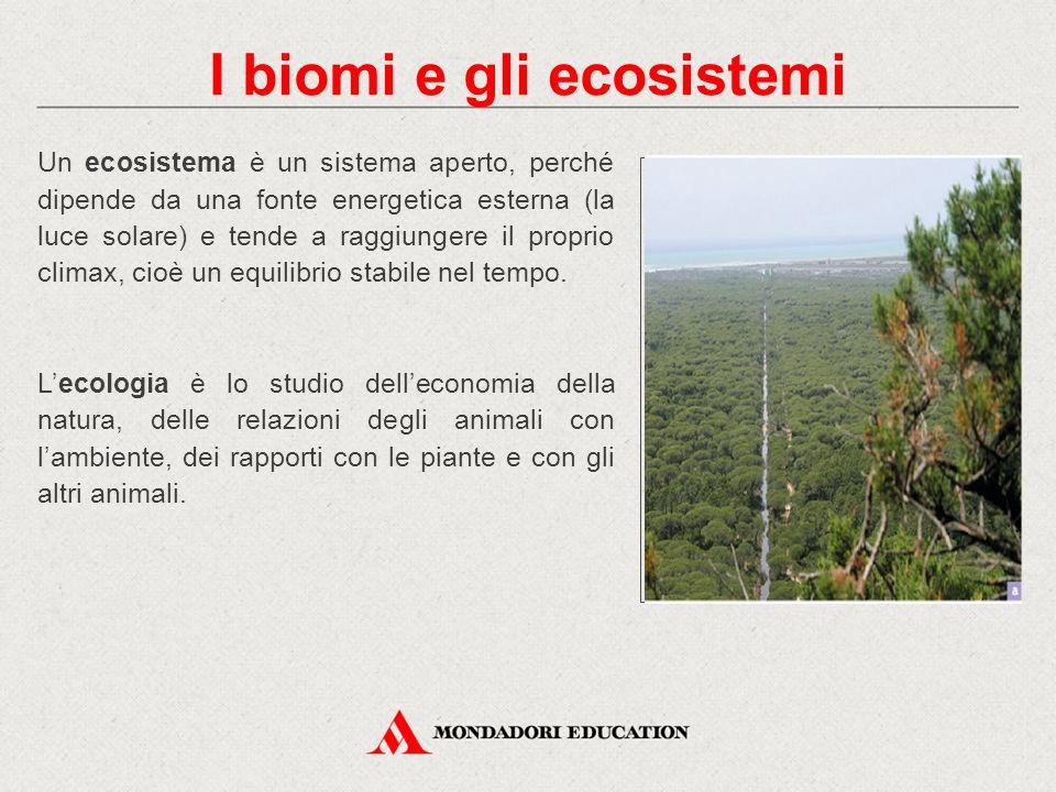Un ecosistema è un sistema aperto, perché dipende da una fonte energetica esterna (la luce solare) e tende a raggiungere il proprio climax, cioè un eq