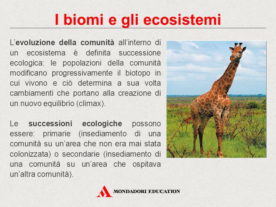 L'evoluzione della comunità all'interno di un ecosistema è definita successione ecologica: le popolazioni della comunità modificano progressivamente i