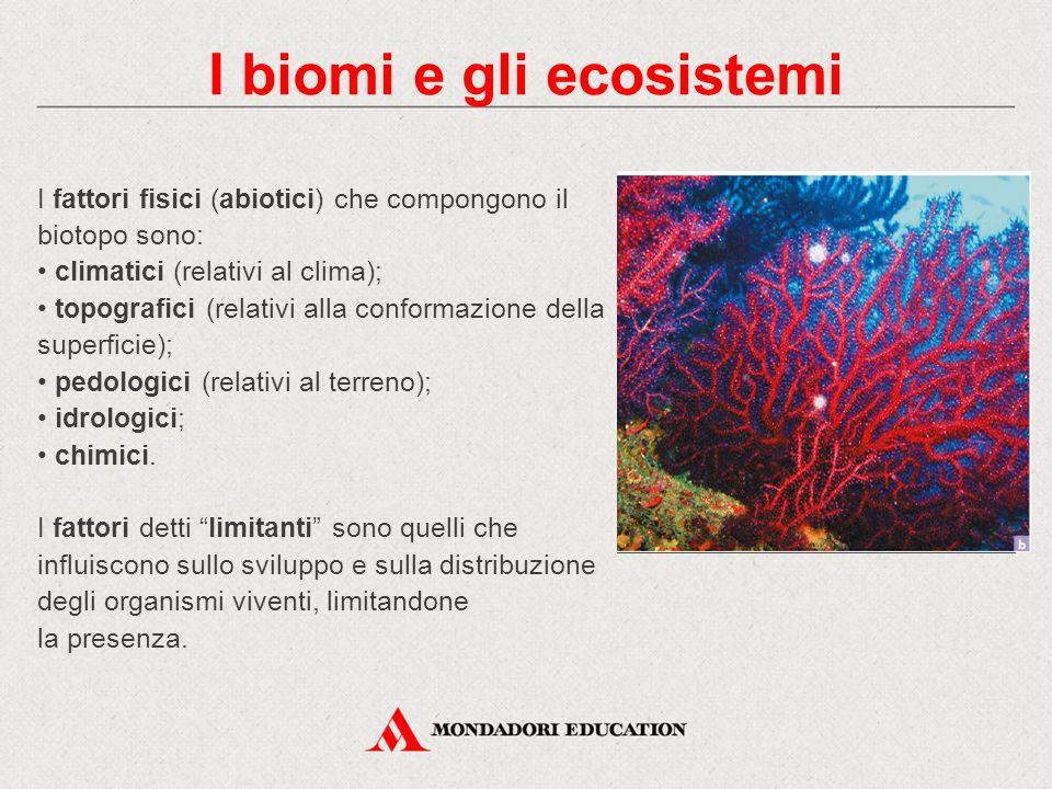 I fattori fisici (abiotici) che compongono il biotopo sono: climatici (relativi al clima); topografici (relativi alla conformazione della superficie);