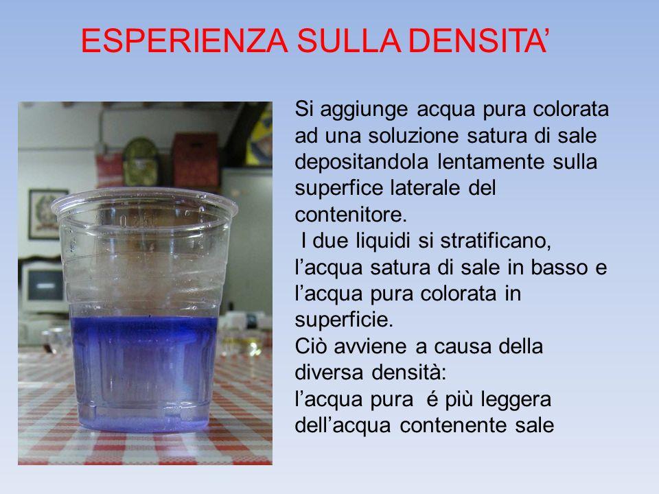 ESPERIENZA SULLA DENSITA' Si aggiunge acqua pura colorata ad una soluzione satura di sale depositandola lentamente sulla superfice laterale del conten