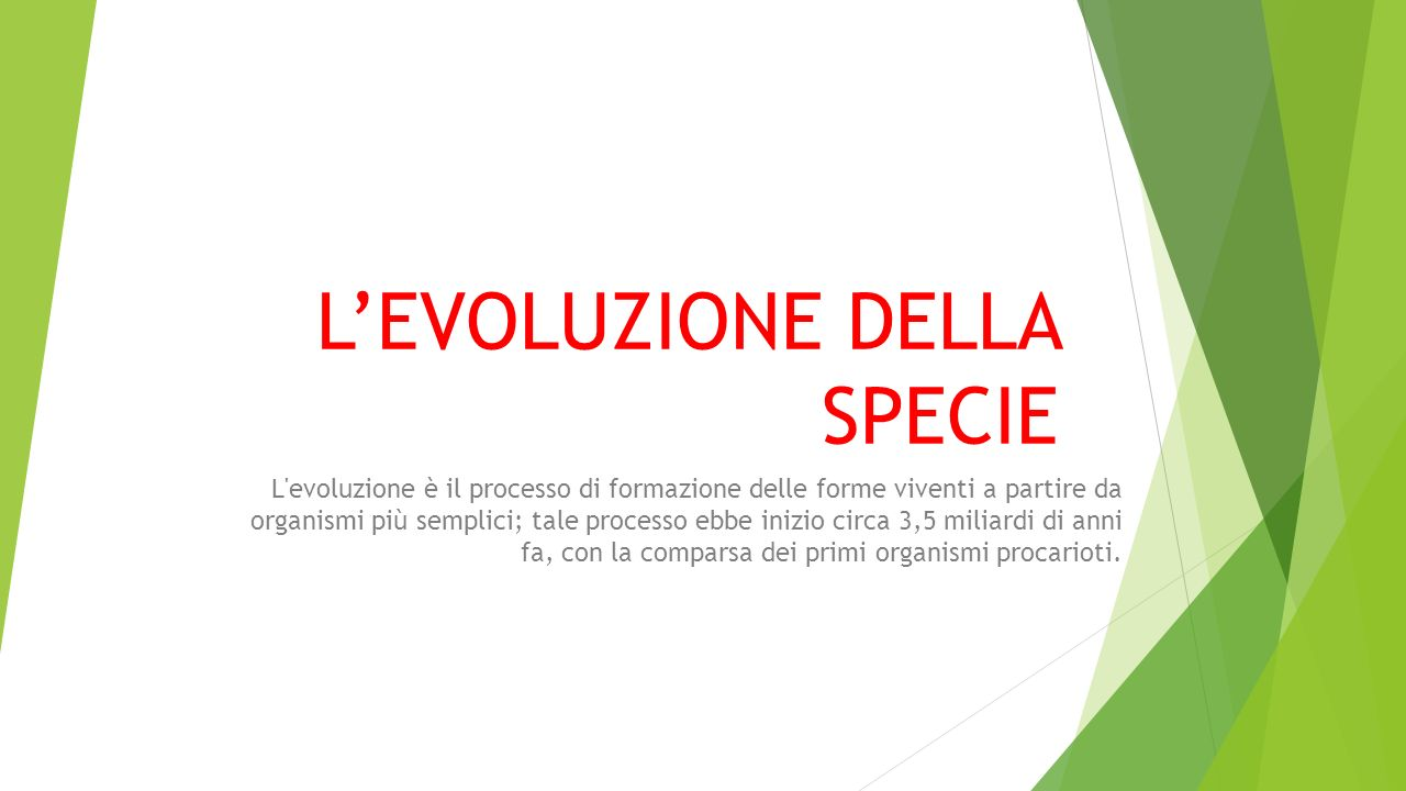 L'EVOLUZIONE DELLA SPECIE L'evoluzione è il processo di formazione delle forme viventi a partire da organismi più semplici; tale processo ebbe inizio