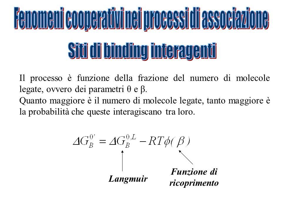 Il processo è funzione della frazione del numero di molecole legate, ovvero dei parametri θ e β.