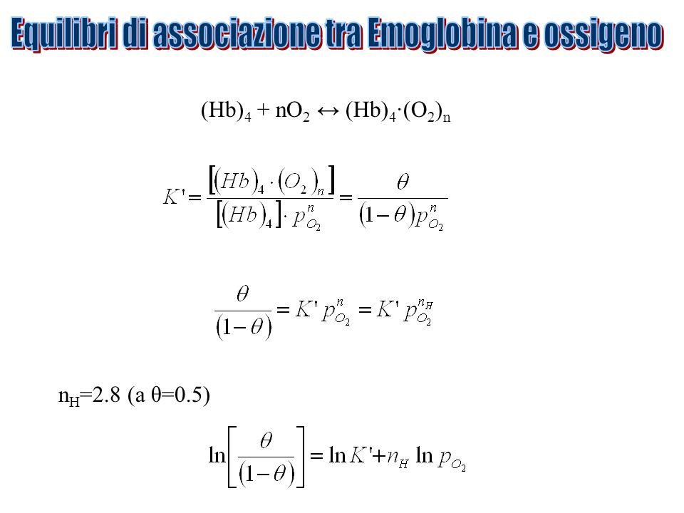 (Hb) 4 + nO 2 ↔ (Hb) 4 ·(O 2 ) n n H =2.8 (a θ=0.5)