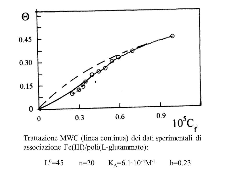 Trattazione MWC (linea continua) dei dati sperimentali di associazione Fe(III)/poli(L-glutammato): L 0 =45 n=20 K A =6.1·10 -4 M -1 h=0.23