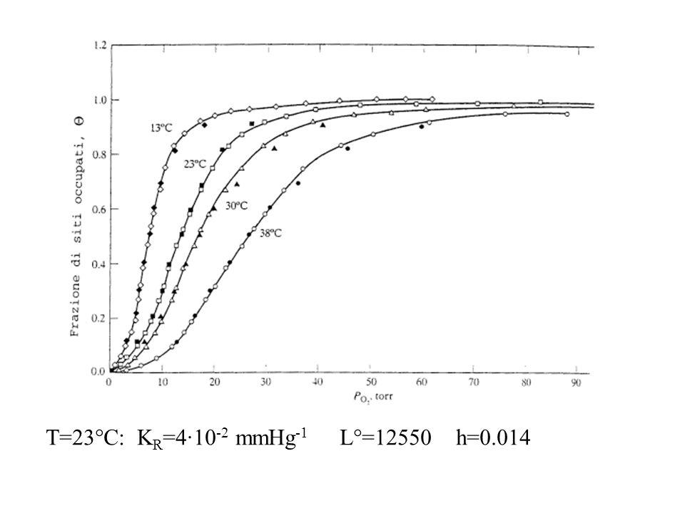 T=23°C: K R =4·10 -2 mmHg -1 L°=12550 h=0.014