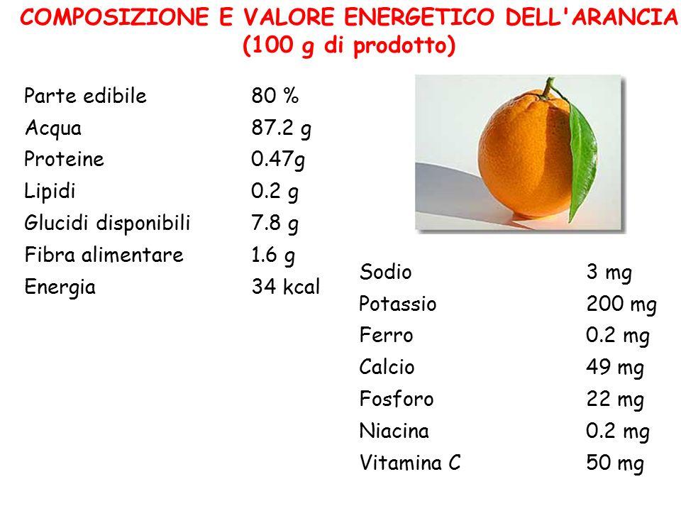 COMPOSIZIONE E VALORE ENERGETICO DELL'ARANCIA (100 g di prodotto) Parte edibile80 % Acqua87.2 g Proteine0.47g Lipidi0.2 g Glucidi disponibili7.8 g Fib