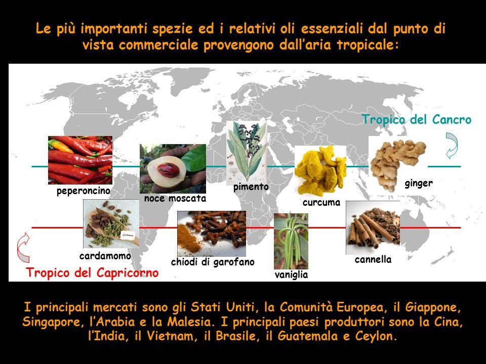 Tropico del Capricorno Tropico del Cancro Le più importanti spezie ed i relativi oli essenziali dal punto di vista commerciale provengono dall'aria tr