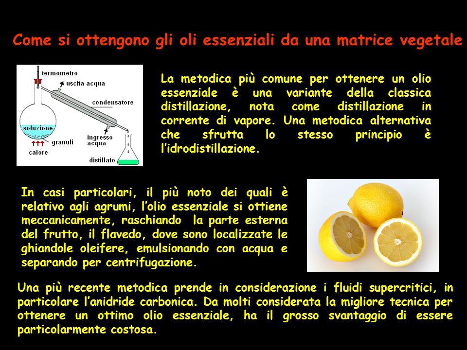Come si ottengono gli oli essenziali da una matrice vegetale La metodica più comune per ottenere un olio essenziale è una variante della classica dist