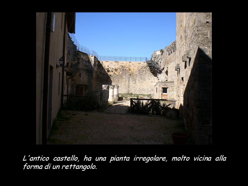 Alla fine del '200 i Franzesi, famiglia originaria del Valdarno Superiore arrichitesi con i commerci in Francia, comprarono il castello, lo ingrandiro