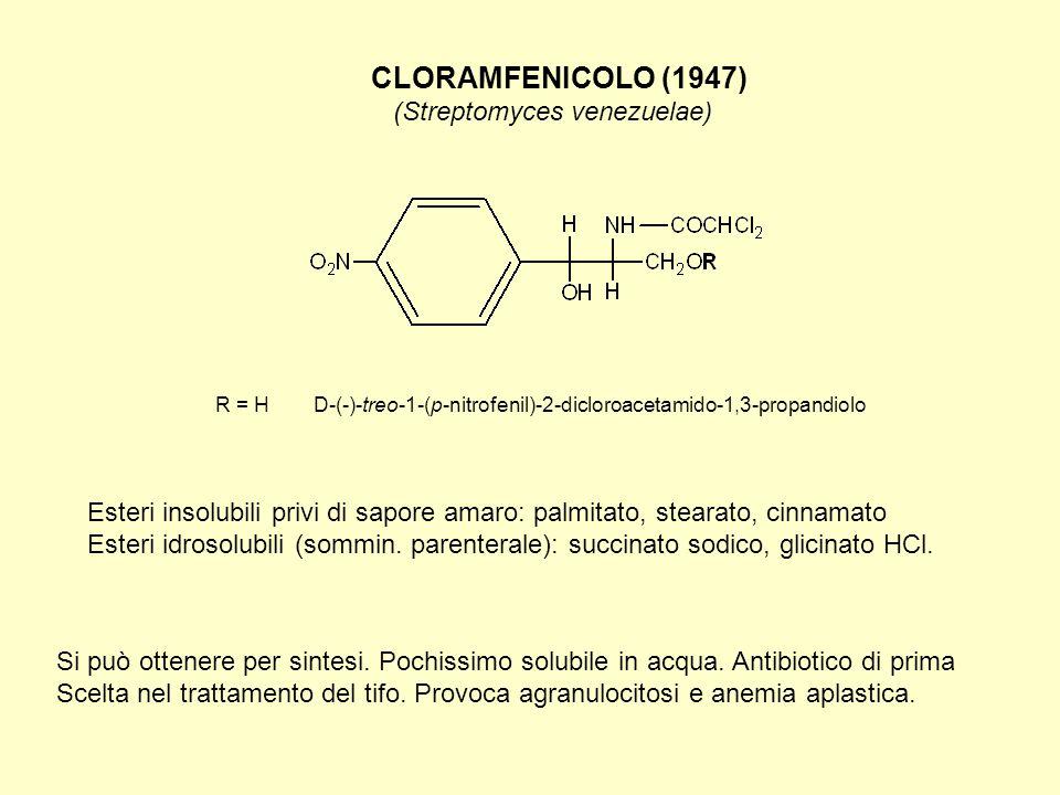 ANTIBIOTICI MACROLIDICI (1952) ERITROMICINA (Streptomyces erythraeus) Possiede spettro antibiotico simile a quello della penicillina.