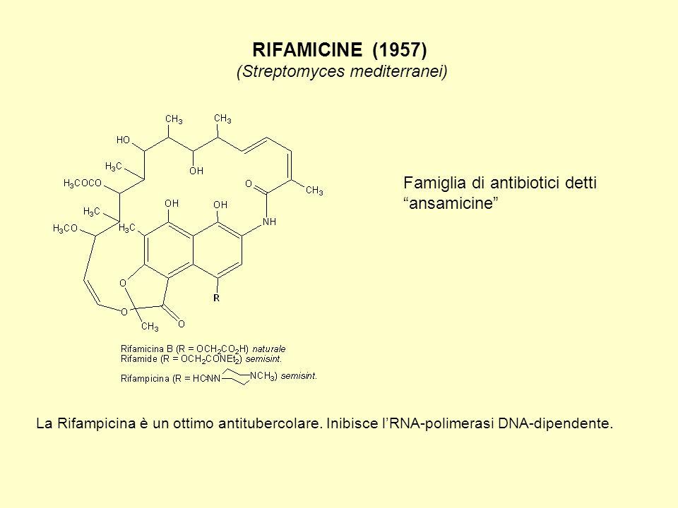 RIFAMICINE (1957) (Streptomyces mediterranei) La Rifampicina è un ottimo antitubercolare. Inibisce l'RNA-polimerasi DNA-dipendente. Famiglia di antibi