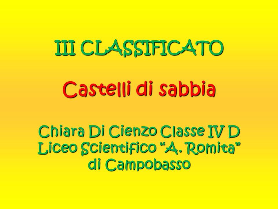 """III CLASSIFICATO Castelli di sabbia Chiara Di Cienzo Classe IV D Liceo Scientifico """"A. Romita"""" di Campobasso"""