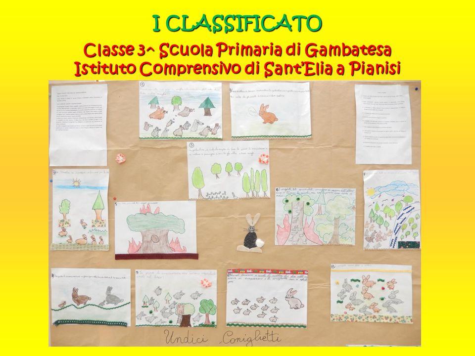 I CLASSIFICATO Anna Sandroni Progetto Raffaello Classe II A-SUA Liceo delle Scienze Umane Rinaldini di Ancona
