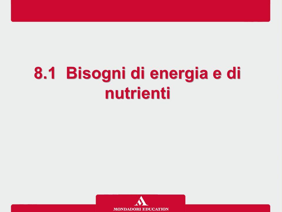 Le linee guida per una sana alimentazione italiana raccolgono informazioni e raccomandazioni nutrizionali destinate all'universo dei consumatori.