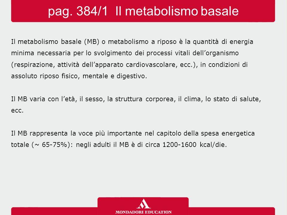 Il metabolismo basale (MB) o metabolismo a riposo è la quantità di energia minima necessaria per lo svolgimento dei processi vitali dell'organismo (respirazione, attività dell'apparato cardiovascolare, ecc.), in condizioni di assoluto riposo fisico, mentale e digestivo.