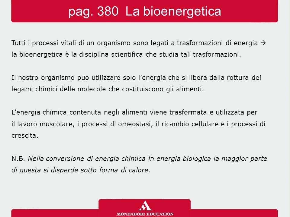 Tutti i processi vitali di un organismo sono legati a trasformazioni di energia  la bioenergetica è la disciplina scientifica che studia tali trasformazioni.