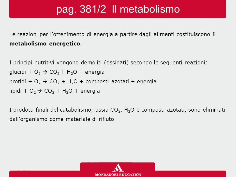 Il potere energetico degli alimenti si determina con la bomba calorimetrica.